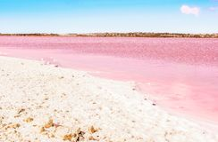 Pink Salt lake and the shore is covered with salt. Torrevieja, Spain Royalty Free Stock Photo