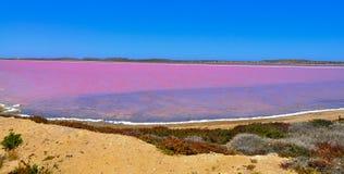Pink salt lake in Western Australia Stock Image