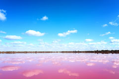 Pink salt lake in Western Australia. Panoramic view of Pink Salt Lake in Western Australia. This lake turns pink in summer cause of an algae with red pigments stock images