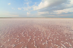 Pink salt lake, where salt is mined for food. Royalty Free Stock Photos