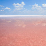 Pink salt lake, where salt is mined for food. Stock Image