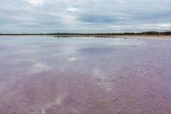 Pink salt surface of Lake Crossbie with sky reflections. Victoria, Australia Royalty Free Stock Image