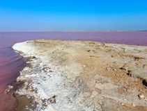 Pink salty Syvash Lake, Ukraine. Pink extremely salty Syvash Lake, colored by microalgae with crystalline salt depositions. Also known as the Putrid Sea or Stock Image
