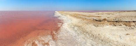 Pink salty Syvash Lake, Ukraine. Pink extremely salty Syvash Lake, colored by microalgae with crystalline salt depositions. Also known as Putrid Sea or Rotten Royalty Free Stock Photos