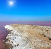 Pink salty Syvash Lake, Ukraine. Sunshiny pink extremely salty Syvash Lake, colored by microalgae with crystalline salt depositions. Also known as the Putrid Sea Royalty Free Stock Image