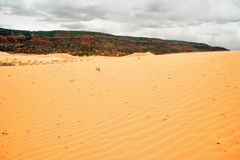 Pink Sand Dune under gloomy sky Stock Images