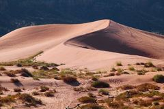 Pink Sand Dunes, Utah, Usa, Desert Royalty Free Stock Photos