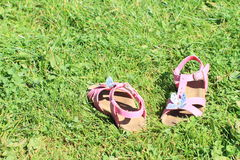 Pink sandals on the grass Stock Photo