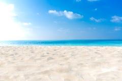 pink scallop seashell Άσπρη άμμος, μπλε ουρανός και μπλε θάλασσα Έννοια θερινών παραλιών διακοπών και διακοπών copyspace τετράγων στοκ εικόνες