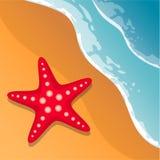 pink scallop seashell 在海岸视图之上 波浪和沙子 海星 蓝色云彩图象彩虹天空向量 库存图片