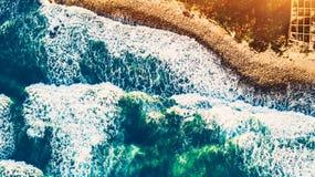 pink scallop seashell στοκ φωτογραφίες με δικαίωμα ελεύθερης χρήσης