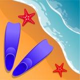 pink scallop seashell Stock Illustrationer