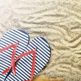 pink scallop seashell Strandhäftklammermatare och solglasögon Royaltyfria Bilder