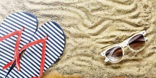 pink scallop seashell Strandhäftklammermatare och solglasögon Arkivfoto