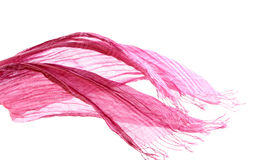 Pink scarf and wind Royalty Free Stock Photos