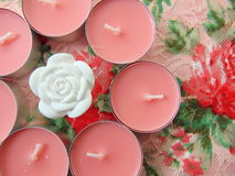 Pink scented candles with white flower in the middle. On flower background stock photos