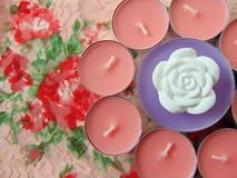 Pink scented candles with white flower in the middle. On flower background stock images