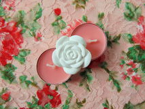 Pink scented candles with white flower in the middle. On flower background royalty free stock photos