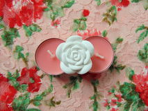 Pink scented candles with white flower in the middle. On flower background stock photography