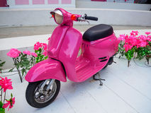 Pink Scooter Royalty Free Stock Image