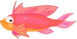 Pink sea fish Stock Image