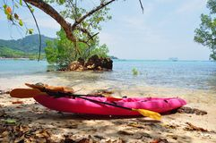 Pink sea kayak. Kayak and two paddles on a tropical beach shaded by mangrove trees. Koh Libong, Thailand stock image