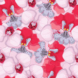 Pink seamless background with pink and red orchids Royalty Free Stock Images