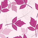 Pink seamless pattern with leaves Stock Photo