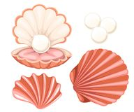 Free Pink Seashell With Pearl. Vector Illustration Isolated On White Background. Royalty Free Stock Image - 104558126