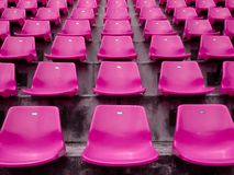 Pink seats on the stadium Stock Images
