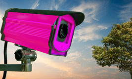 Pink security camera Royalty Free Stock Photos