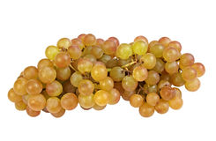 Pink seedless Muscat Grapes Stock Photography