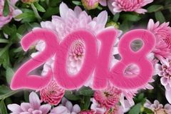 2018 in pink. 2018 in shades of pink Stock Photo
