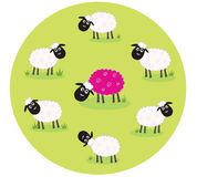 Pink sheep is lonely in the middle of white sheep. Stylized  illustration of sheep family. The pink sheep is different and standing alone. Is this sheep with new Stock Photos