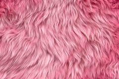 Pink sheepskin Royalty Free Stock Image
