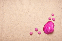 Pink Shell and sand background Royalty Free Stock Photo