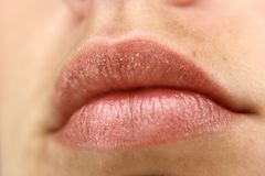 Pink Shimmery Lips Stock Photography
