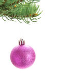 Pink shiny bauble hanging on Christmas tree Stock Photo