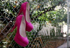 Pink shoes. Hanging in the back yard Royalty Free Stock Photos