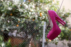 Pink shoes. Hanging in the back yard Stock Photography