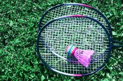 A pink shuttlecock and a badminton racket on the green lawn grass. A pink shuttlecock and a badminton racket lie on the green lawn grass stock photography