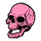 Pink skull. Vector clip art. Vector clip art of pink skull isolated on white background Royalty Free Stock Photos