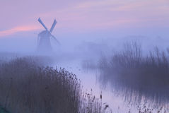 Pink sky in Holland. Royalty Free Stock Images