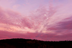 Pink sky with moon Stock Photography