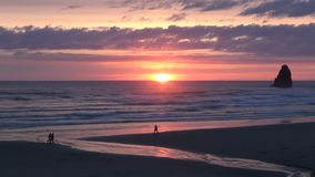 Pink sky sunset over cannon beach in oregon. Video of pink sky sunset over cannon beach in oregon stock video footage
