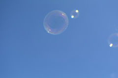 Pink soap bubble Royalty Free Stock Images