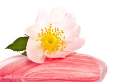 Pink soap with flower Royalty Free Stock Photography