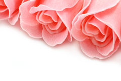 Pink soap roses close-up Royalty Free Stock Image