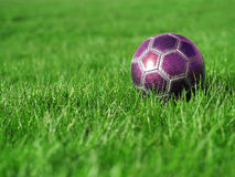 Pink Soccer Ball on Grass. A pink soccer ball on a field of bright, green grass on a sunny day Royalty Free Stock Images