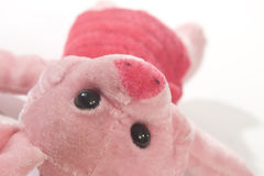 Pink soft toys. With sad eyes Stock Images